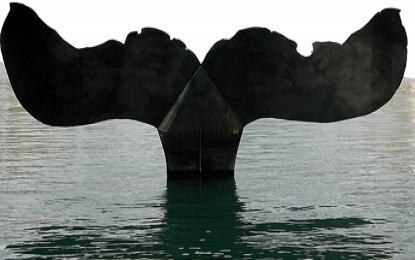Cartagena: sesión informativa amianto